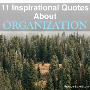 Image of a forest and the phrase, 11 Inspirational Quotes About Organization